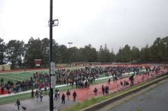 Walkout against School Shooting