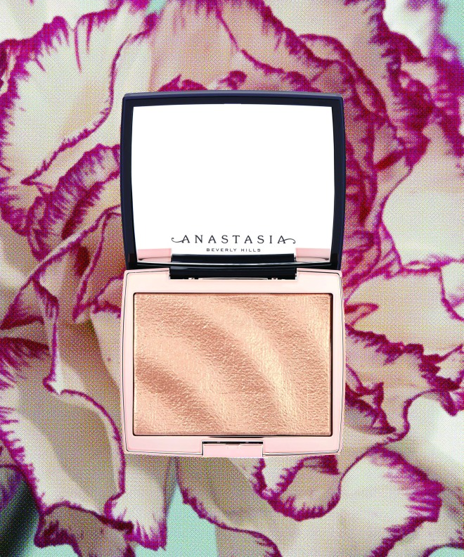 CYMK anastasia highlighter on floral