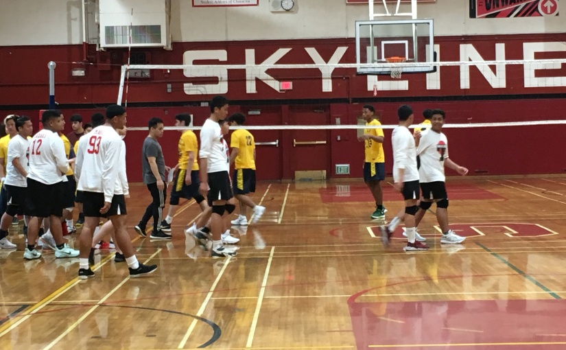 Men's Volleyball Founded